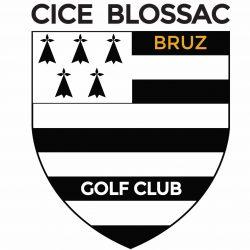 LOGO CICE BLOSSAC  -- NOIR OR POUR BRODERIE TEXTILE COLORIS TRES